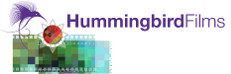 Hummingbird Films